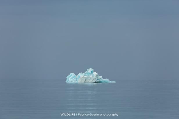 arctique4_fguerin